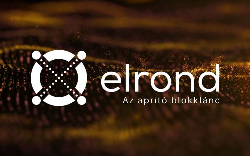 Az Elrond blokklánc logója